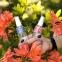 Сухое масло для кончиков волос «Розовое дерево» - 2
